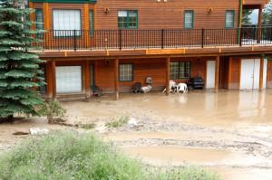 The National Flood Insurance Program in North Carolina